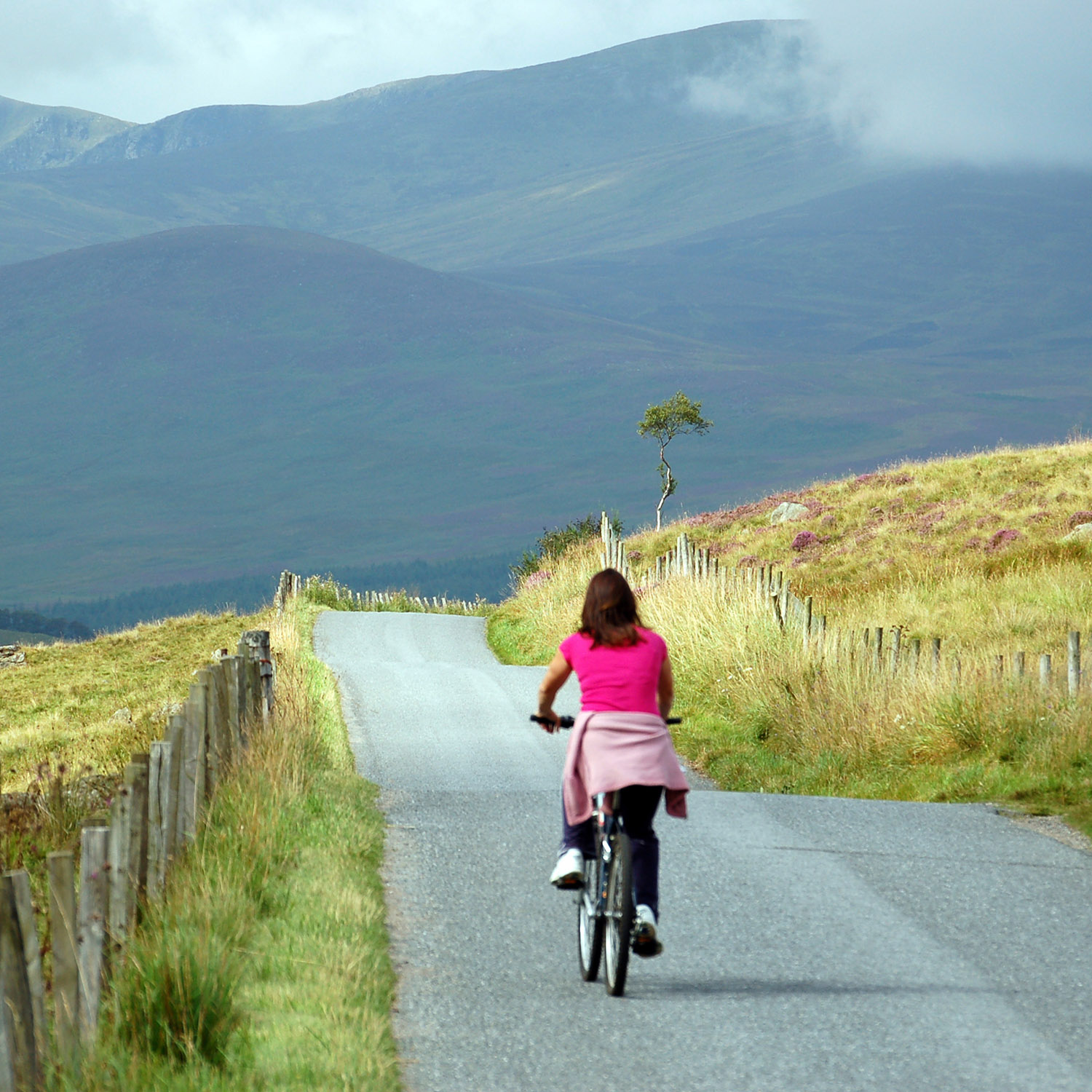Wonderful cycling close to our luxury self catering lodges in the Scottish Highlands