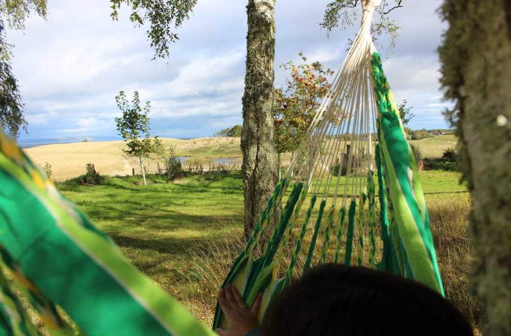Swinging in the hammock